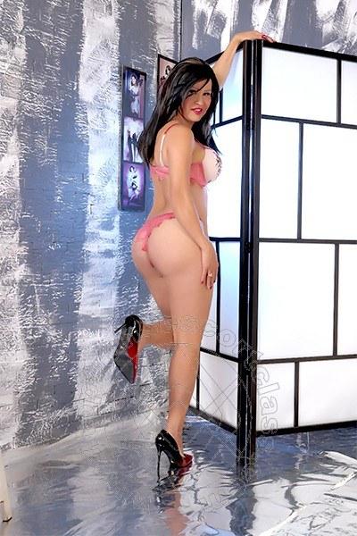 Paola New  TRENTO 3509066425